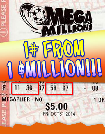 Another Mega Millions Winner in 2014