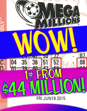 Another MEGA MILLIONS Winner in 2015